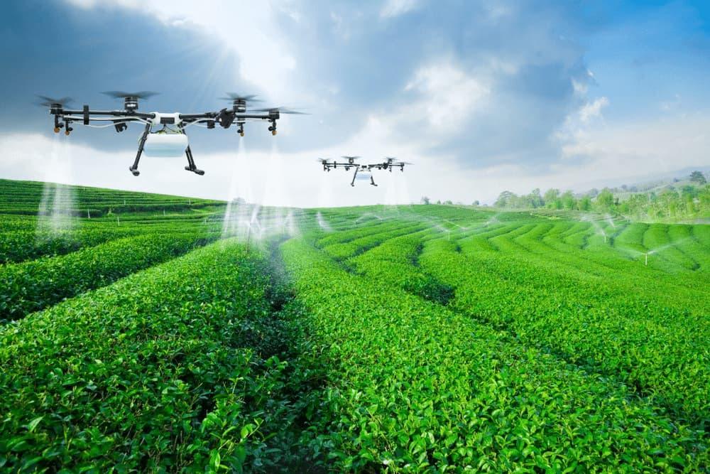 FAQ: Dlaczego rolnicy potrzebują UAV