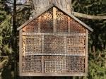 Jak zbudować hotel dla pszczół