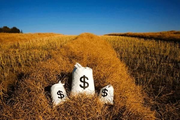 4 najbardziej płatne zawody w branży technologii rolniczych przyszłości